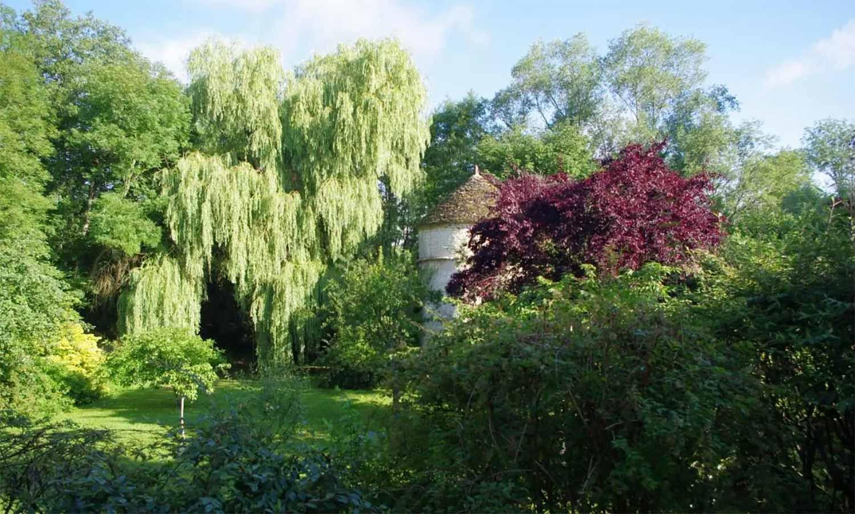 jardin_arbres_20